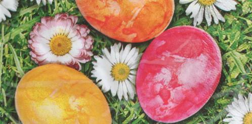 5 Servietten Blumen gezeichnet schöne Farben Serviettentechnik Motivservietten